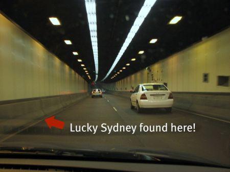 Kitten_found_Sydney_Harbour_Tunnel
