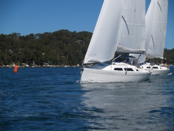 hanse-325-and-355-on-pittwater.jpg