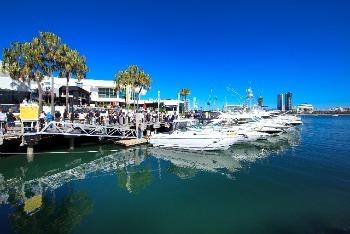 ray-white-marine-at-marina-mirage.jpg